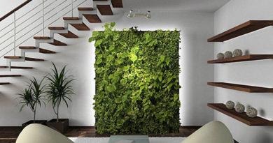 Как создать закрытый сад и какие растения ему подходят?