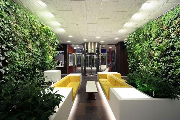 Крытый сад, современный офис дизайн идеи.