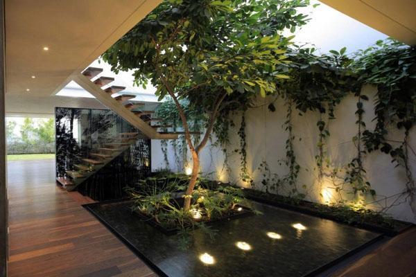 Крытый сад, современный дом идей.