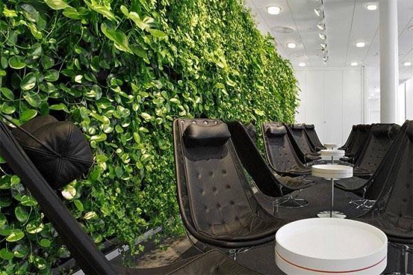 Современное открытое пространство с зелеными растениями.