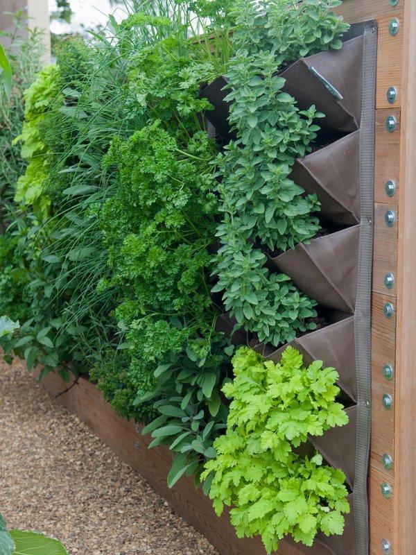 открытый внутренний вертикальный сад