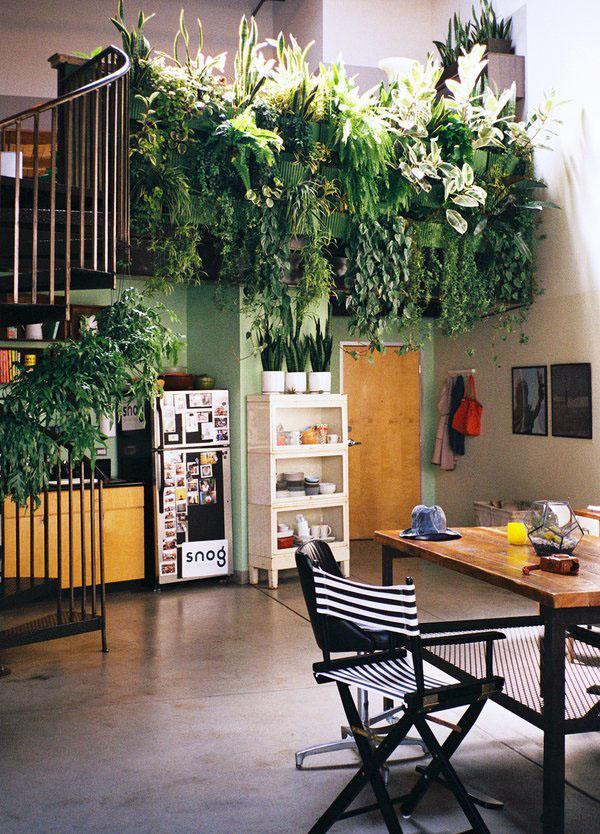 Травяной сад в карманных плантаторах