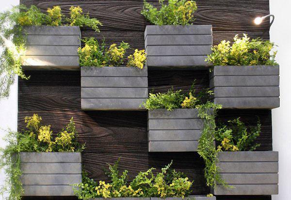 Дизайн наружных стенных плантаторов
