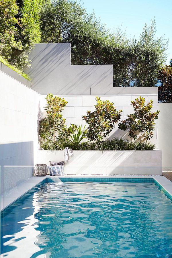 Небольшие дизайнерские идеи для небольших бассейнов.