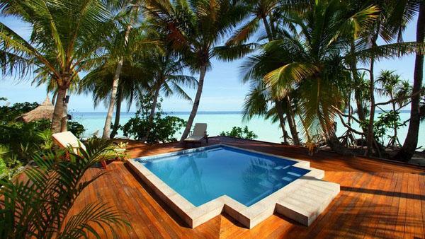 Маленький дизайн бассейна, тропический интерьер.