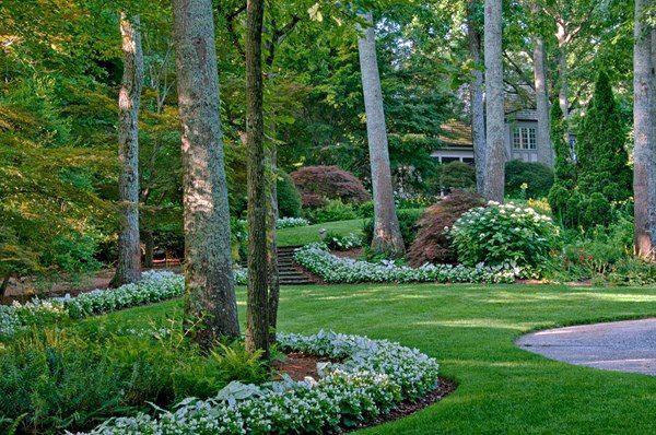 Интересные идеи дизайна сада
