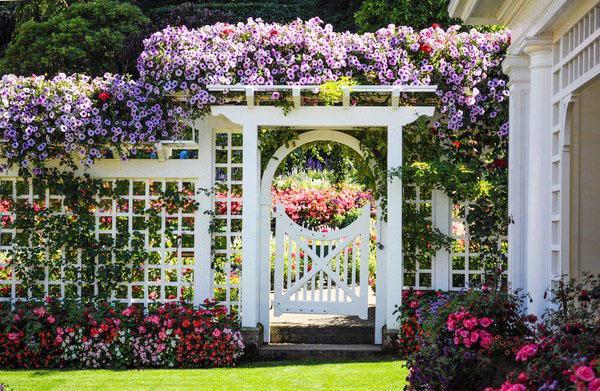 Цветник садовые ворота фото