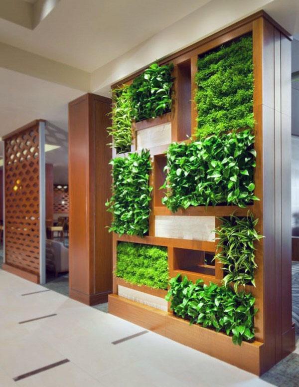 Выбор растений для вертикального сада.