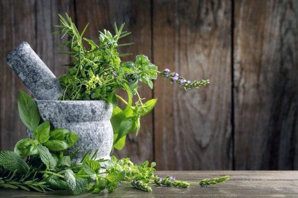 идеи для травяных садов