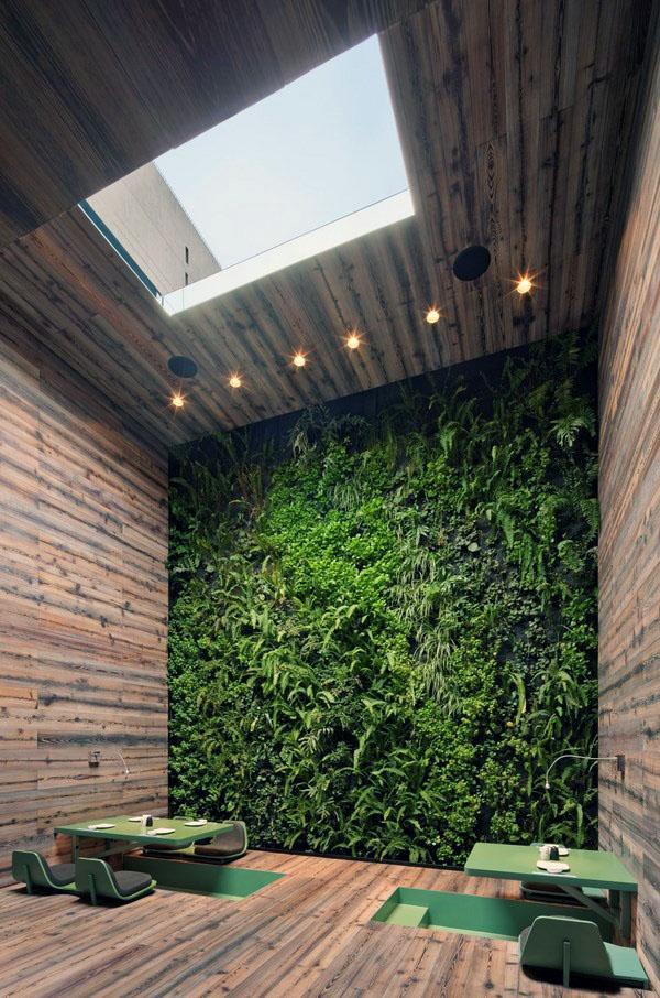 Идеи дизайна домашнего сада