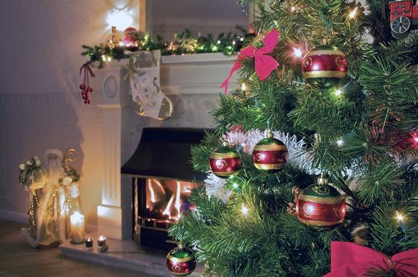 Живая новогодняя елка место установки