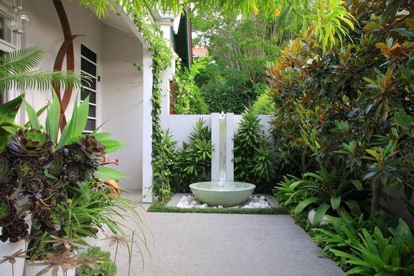 Растения дополняют водную функцию во внутреннем дворике.