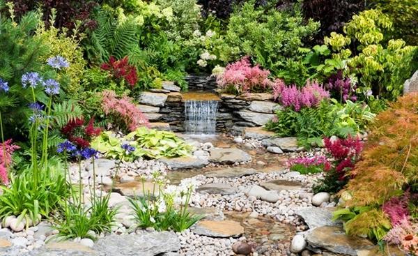 Цветущие растения и проточная вода,