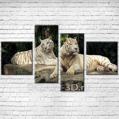 dva-tigra