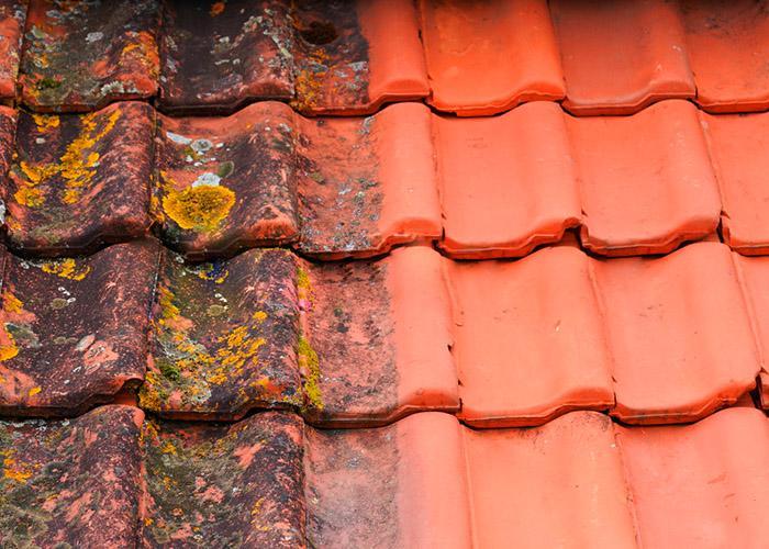 Как избавиться от мха на крыше и предотвратить его появление?