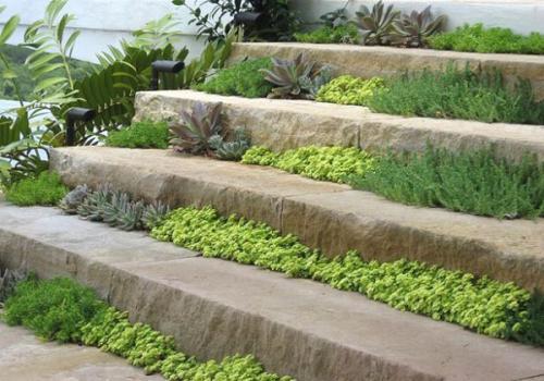 Дизайн садовой дорожки dei-dizajna-sadovix-dorojek-iz-kamnja-15