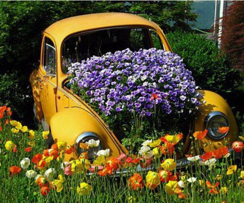 Старый авто для цветочницы