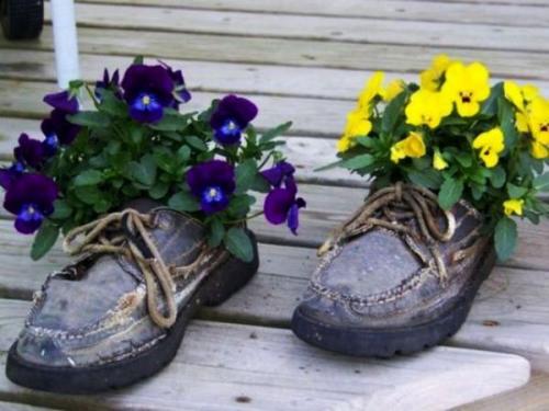 Цветы в старой обуви