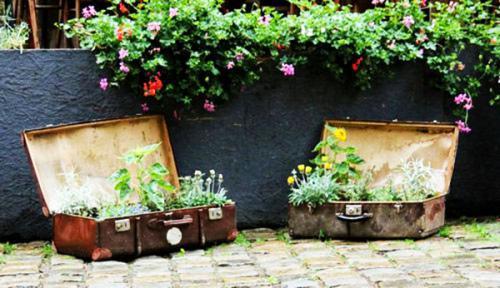 Старые чемоданы  цветник