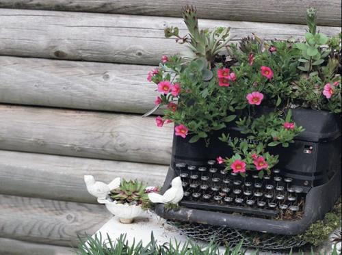 Старая печатающая машинка цветник