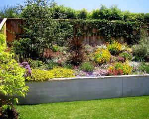 Современный дизайн вертикальной стены сада