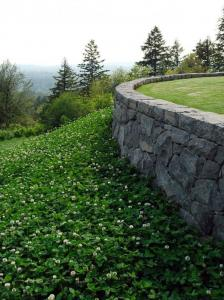 Современный садовый бетон и каменные стены