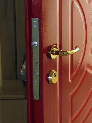типы дверей с дверью из кованого железа