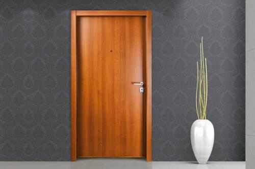 как выбрать безопасные жилые двери