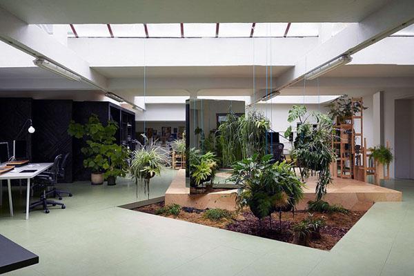Современный дизайн домашнего сада